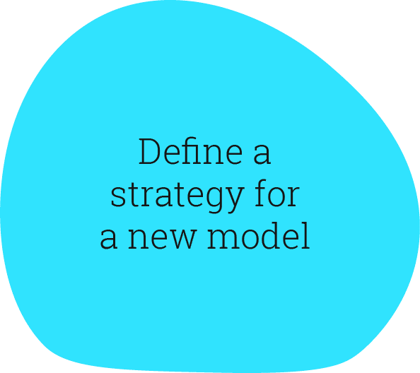 Define a strategy for a new model